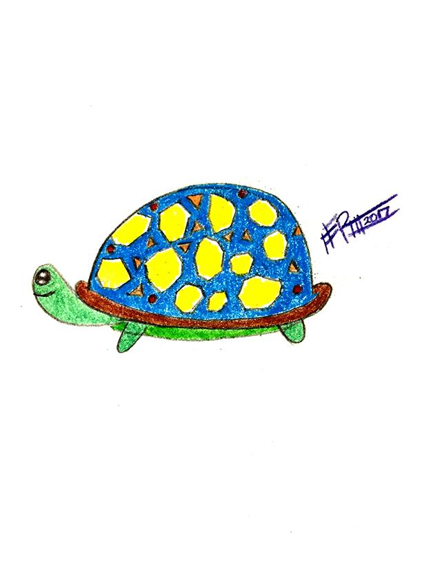 Turtle Plan